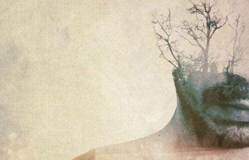 Doppelaufnahme eines Mannes und eines kahlen Baumes
