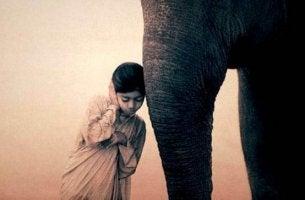 Eine Möglichkeit, den Geist zu entspannen - Kind horcht am Rüssel eines Elefanten