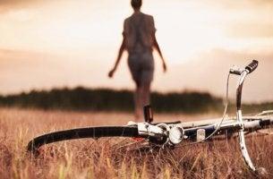 Fahrrad wurde auf einem Feld abgelegt