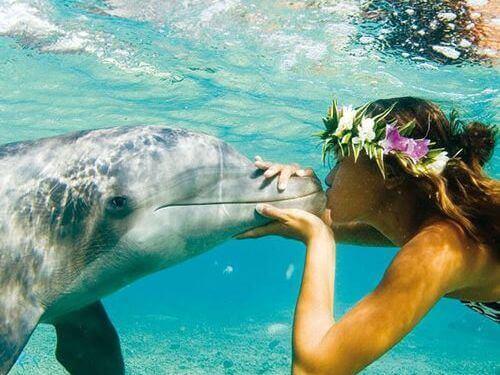 Frau küsst Delfin
