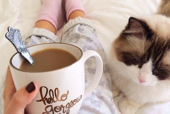 Frau mit Katze im Bett