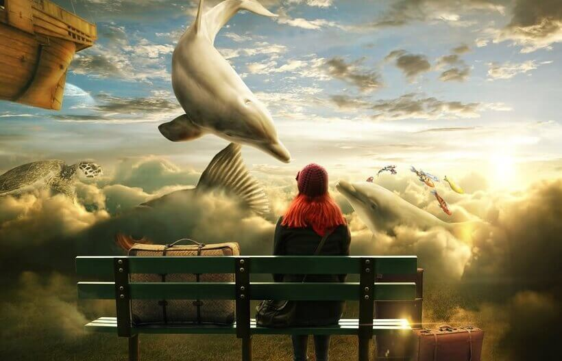 Frau vor Delfinen