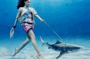 Die Auswirkungen von Schuld nach nicht normgerechten Verhalten - Frau geht mit einem Hai spazieren
