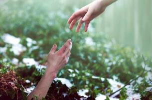 Psychologische erste Hilfe - eine helfende Hand reichen