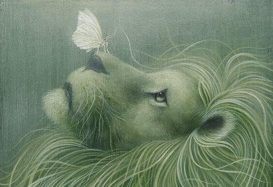 Löwe mit Schmetterling auf der Nase