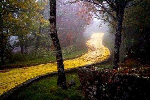 Der gelbe Backsteinweg