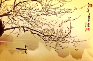 Ein Mann im Boot mit Kirschbaum
