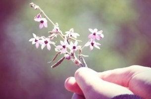 Hand, die Blumen hält
