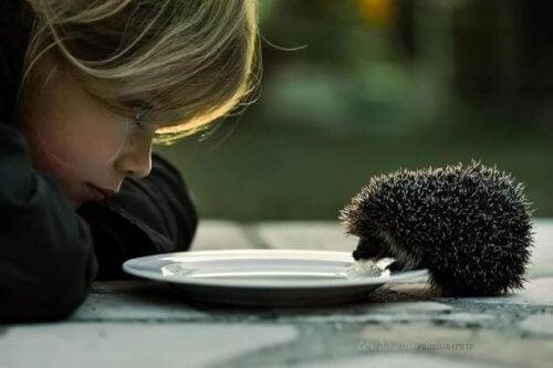 Igel, der mit Kind isst
