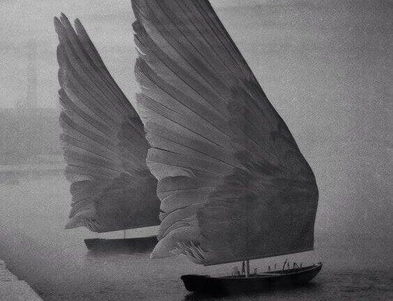 Segel aus Flügeln