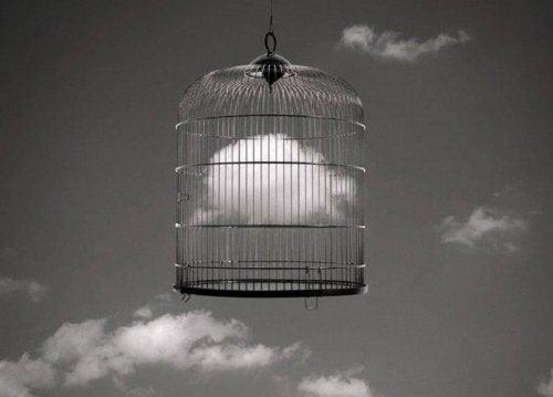 Wolke im Käfig