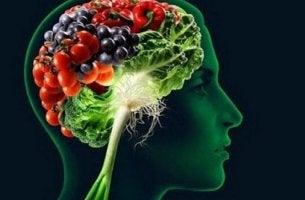 Lebensmittel für ein besseres Gedächtnis - Du bist, was du isst.