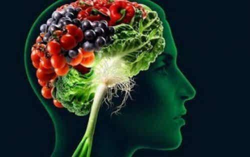 Lebensmittel, die dein Gedächtnis verbessern