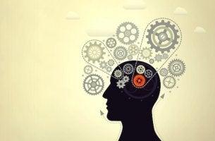 Intelligenz steigern - Person mit Zahnrädern im Kopf
