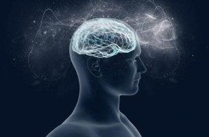Welche ist die Wirkung von Magnesium auf das Gehirn?