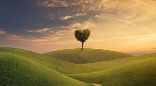 Baum mit einer Krone in Herzform