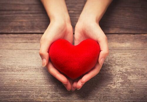 Herz in den Händen halten