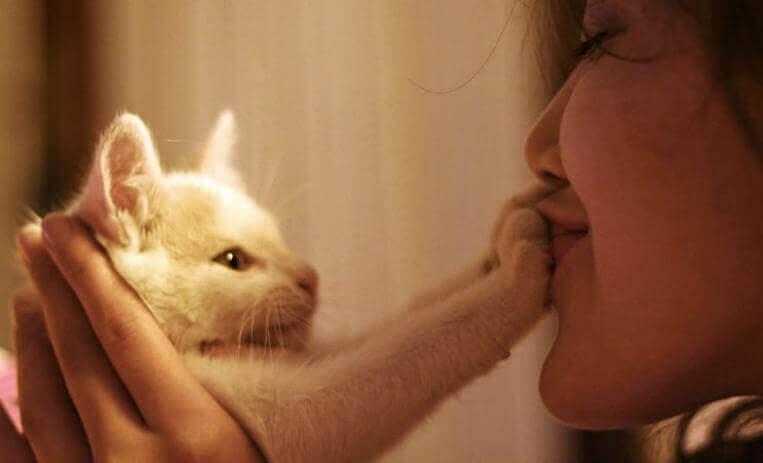 Frau küsst die Pfoten ihrer Katze