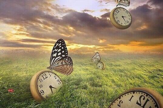 Uhren und Schmetterlinge