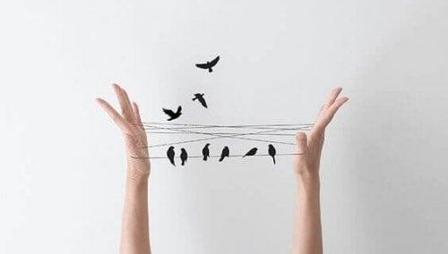 Vögel sitzen auf zwischen Händen gespannter Schnur