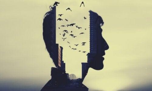 Kopf, durch den man Vögel in einer Stadt sehen kann