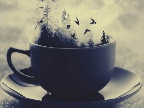 Wald, der sich in einer Tasse befindet