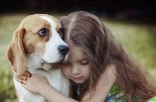 Empathie des Hundes - Mädchen umarmt seinen Hund