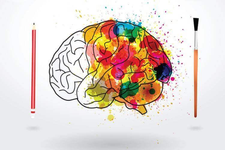 Farbenfrohes Gehirn