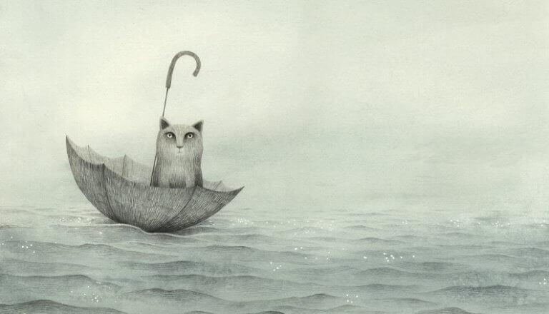 Katze schwimmt im Regenschirm
