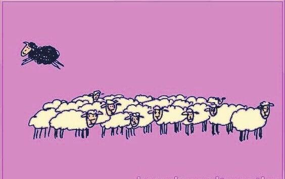 Geschichte vom schwarzen Schaf - Schwarzes Schaf springt über Gruppe weißer Schafe.