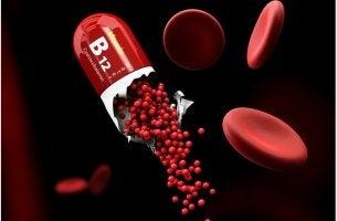 Vitamin-B12-Mangel und Nahrungsergänzung
