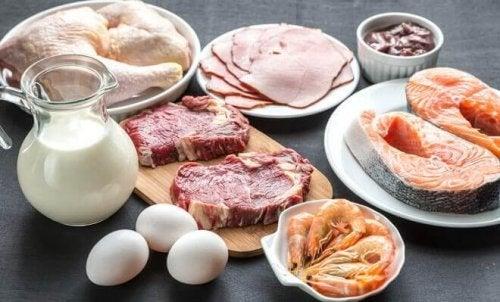 Lebensmittel, die reich an Vitamin B12 sind