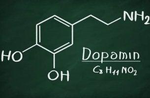 Was ist Dopamin? - Chemische Struktur von Dopamin