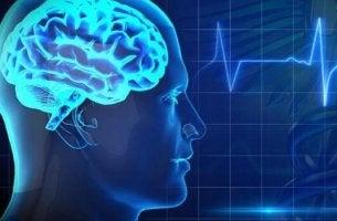 Feinde der Gehirngesundheit - Gehirn und EKG
