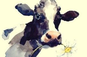 Die Geschichte der Kuh