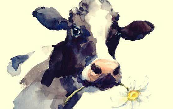 Die Geschichte der Kuh: Wenn die Routine uns einschränkt