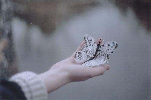 Frau hält zwei Schmetterlinge in der ausgestreckten Hand.