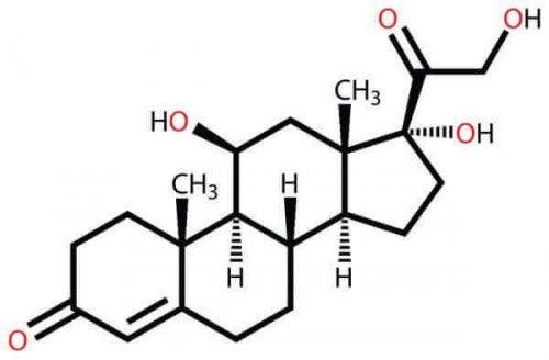 Chemische Struktur von Kortisol