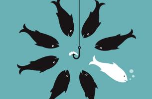 Effektive widersprechen - 8 Fische sind in einer Runde. Ein Fisch verlässt den Schwarm.