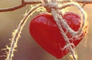 Emotional stärker werden - Herz an einem Zweig