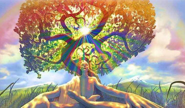 Eine Person meditiert unter einem Baum.