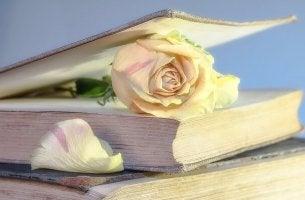 Vorteile des Lesens - Buch mit einer weißen Rose