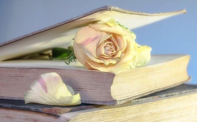Welche Vorteile Lesen für das Gehirn hat