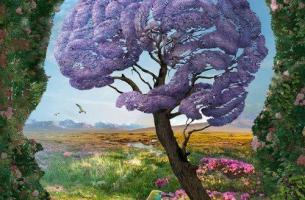 Was ist das limibische System? - Ein Gehirn als Baum dargestellt