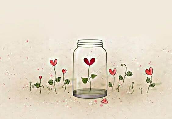 Blume wächst in einem Glas