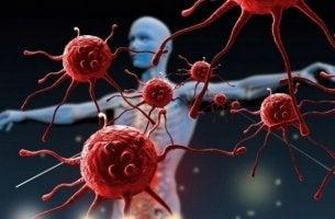 Immunsystem stärken - Immunzellen vor einem Menschen
