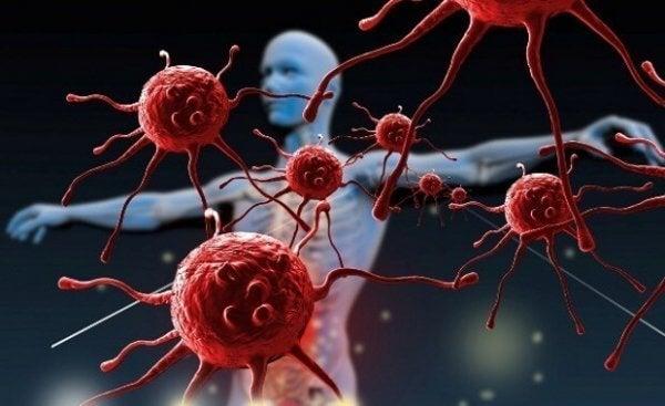 Wie du dein Immunsystem stärken kannst