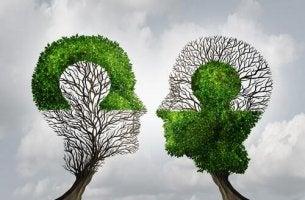 Spiegelneuronen und Empathie - Abbildung zweier Bäume, die sich in ihrer Belaubung umgekehrt spiegeln.