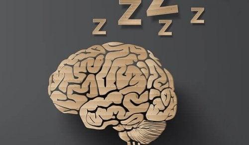 Schlafendes Gehirn