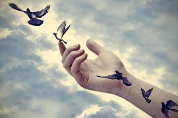 Vogel fliegen aus der Hand